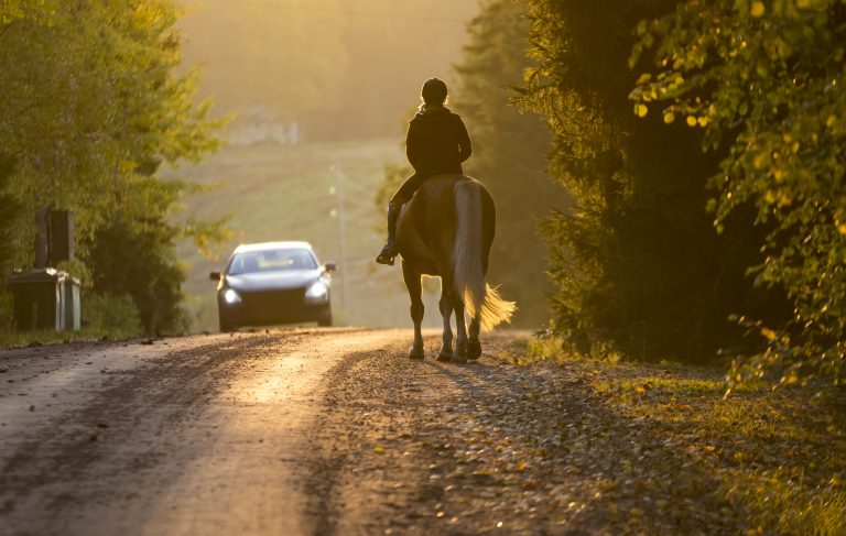How should I overtake a horse when riding my motorcycle?